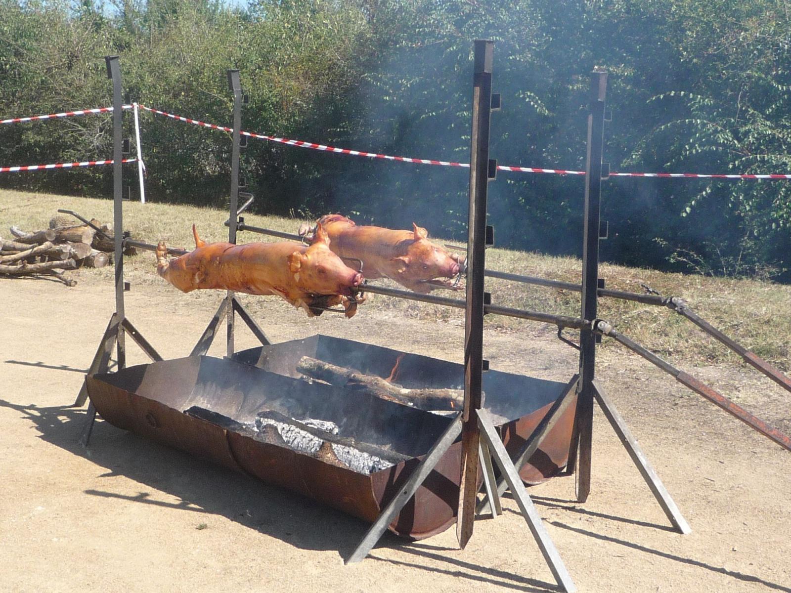 photo de mariage dans lamphithtre de bellebouche cochon de lait pour repas festif - Cochon La Broche Mariage